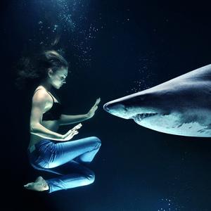 Скачать фильмы бесплатно онлайн акулы онлайн prakard.
