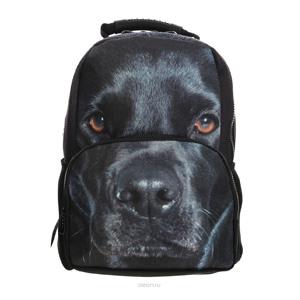 Собачьи рюкзаки купить tiger рюкзаки школьные отзывы